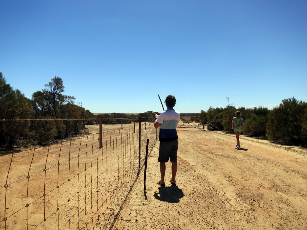 Birgit's beloved fence