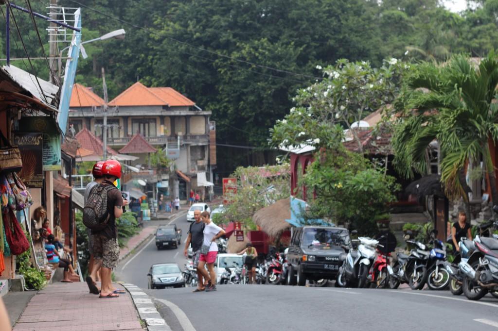 Indonesia EOS 100 2014 076
