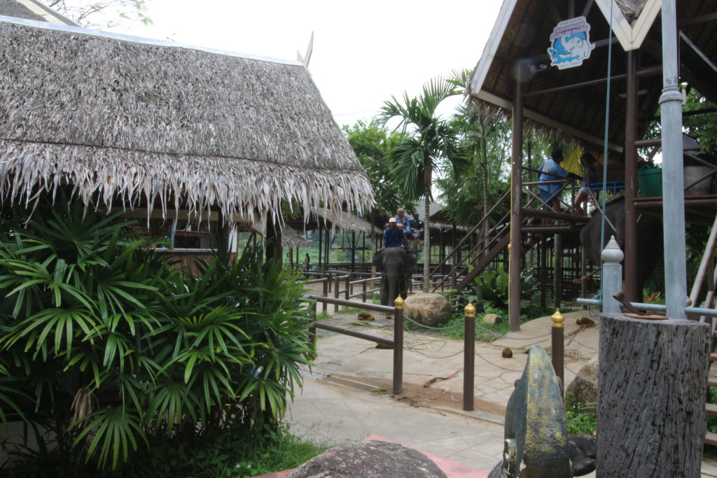 A habitat suitable for elephants? ...or Disneyland?