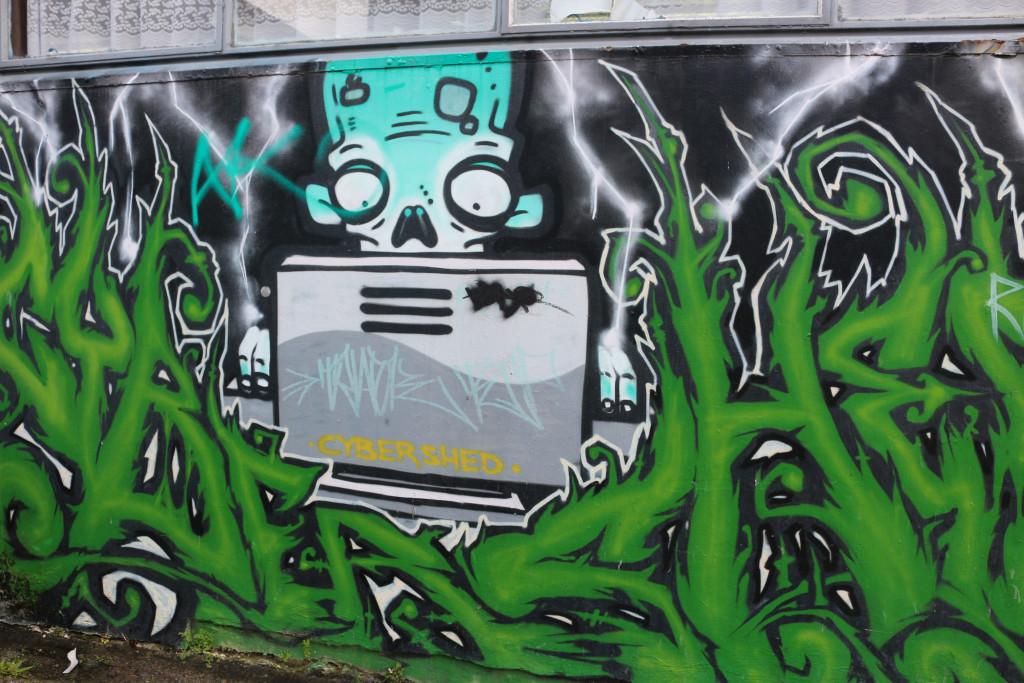 Rotorua street art2
