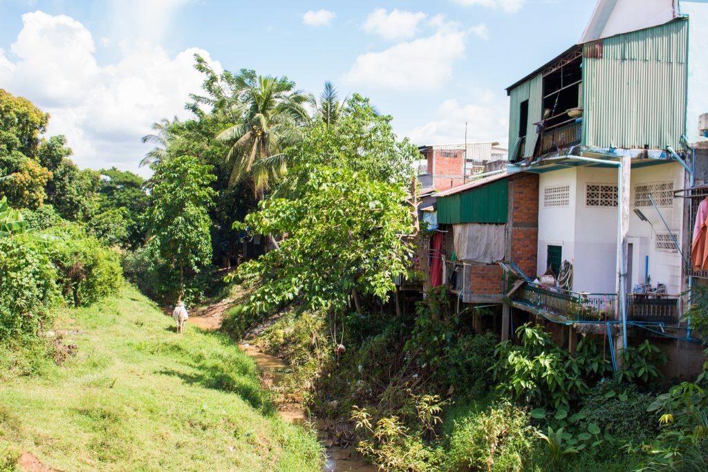 BattambangBlog3