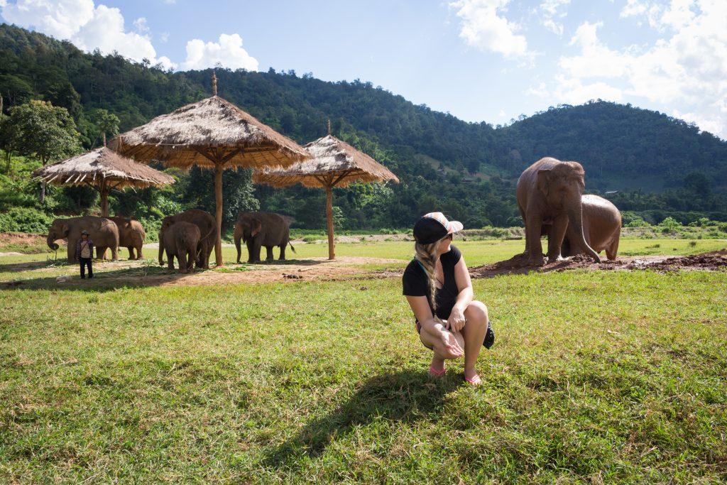 ElephantNatureParkShade2