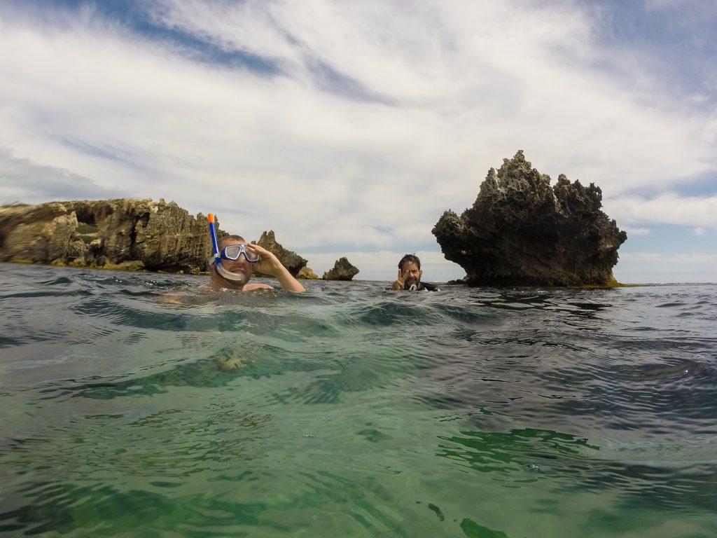 Snorkeling at Penguin Island WA