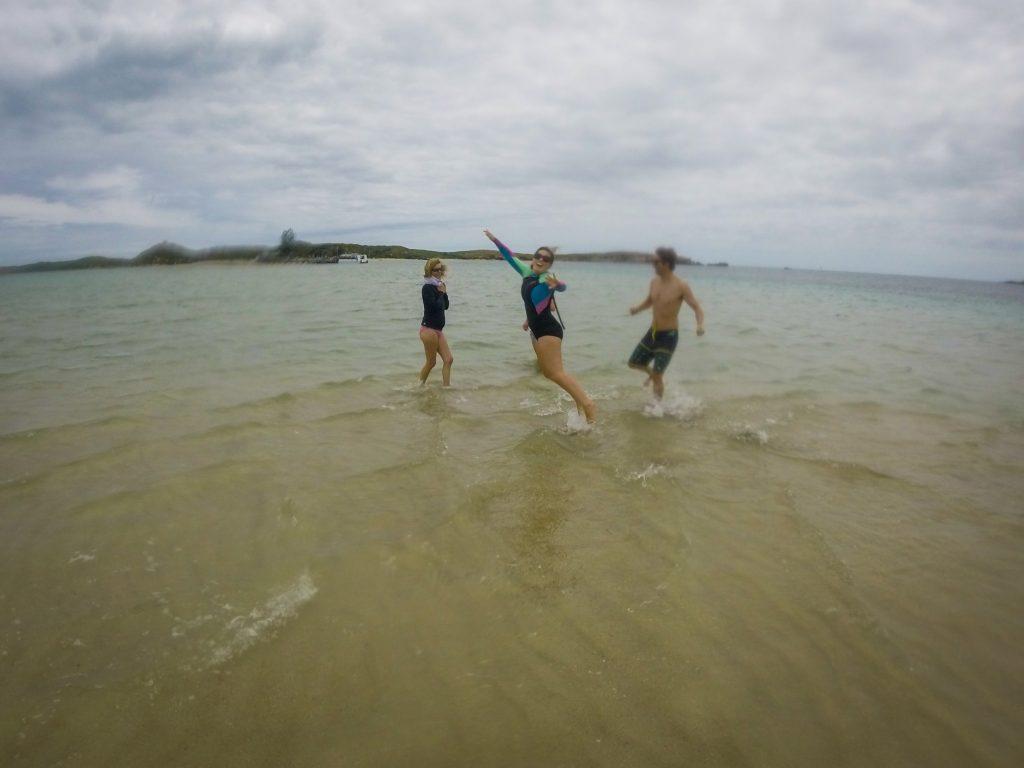 Walking the Sandbar to Penguin Island, Rockingham