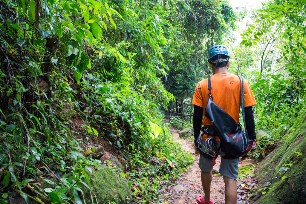 Flight of the Gibbon Ziplining: Flying Through Chiang Mai ...