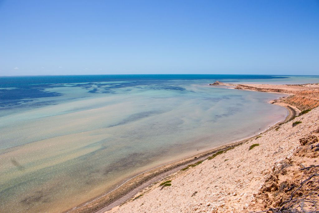 how to get to shark bay australia