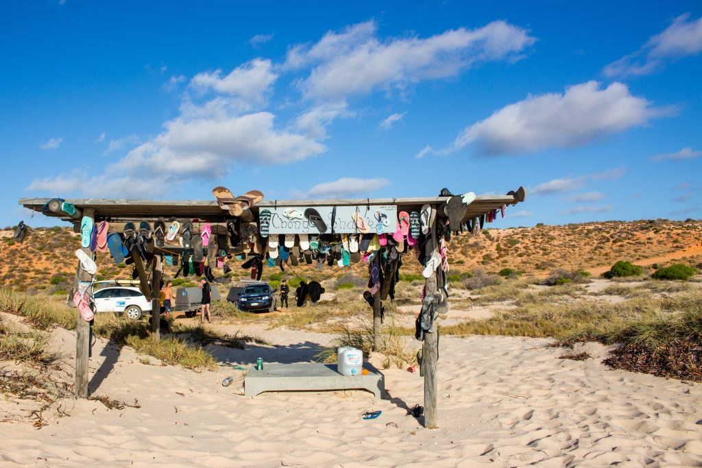The Thong Shack Shark BAy