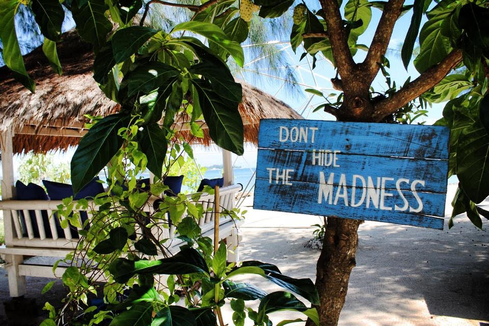 dont hide the madness