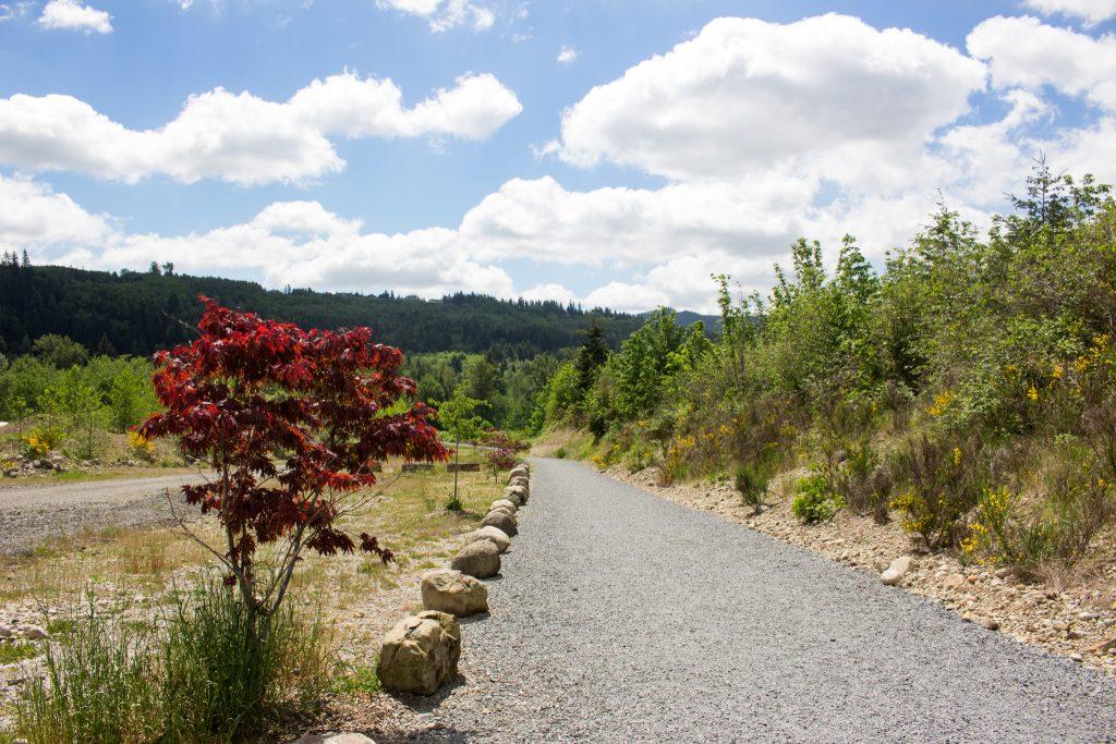 Washington Hike62