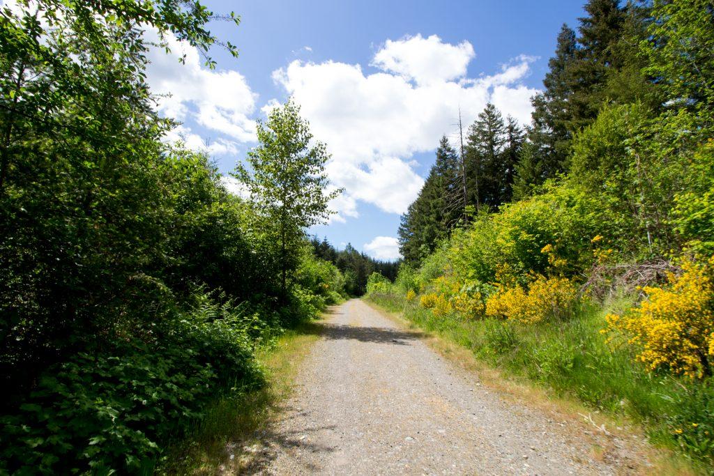 Washington Hike68