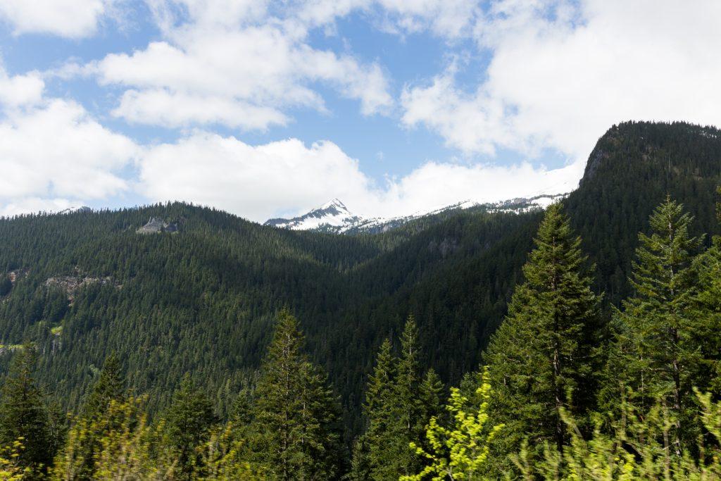 washington-hike28
