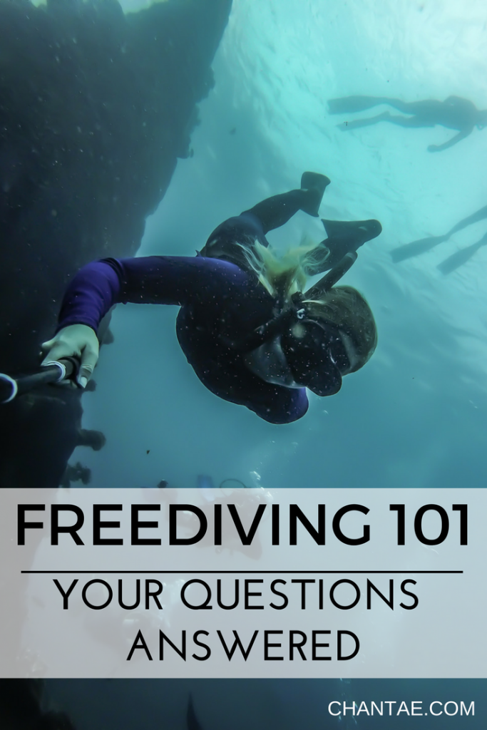 Everything you need to know about getting started freediving. Is it safe? What exactly is it? Can anyone do it?