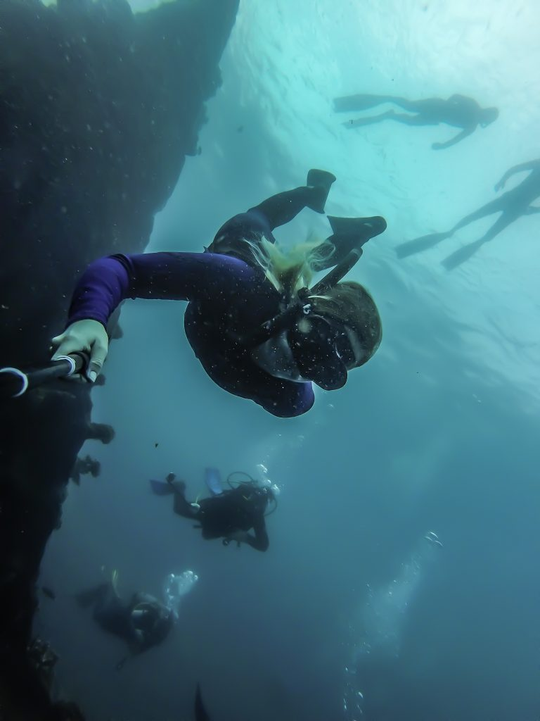 Freediving 101: All About Freediving And Why You Need To